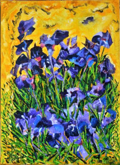 166 les iris de vincent